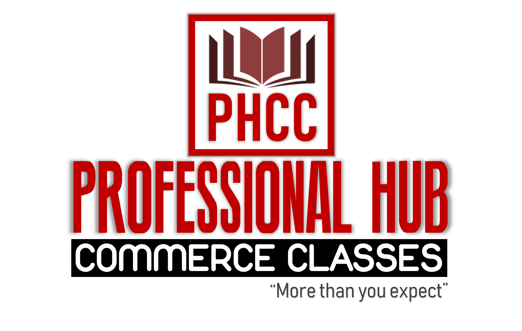 PROFESSIONAL HUB COMMERCE CLASS